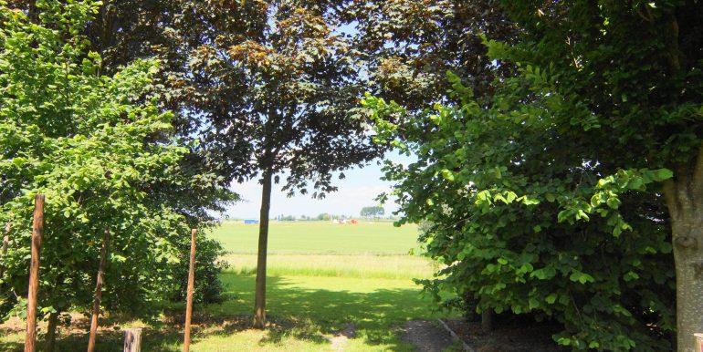 DSC05344 (1)Landbouwgrond