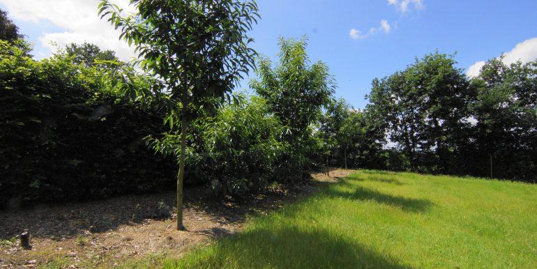 DSC05355 (1)Landbouwgrond