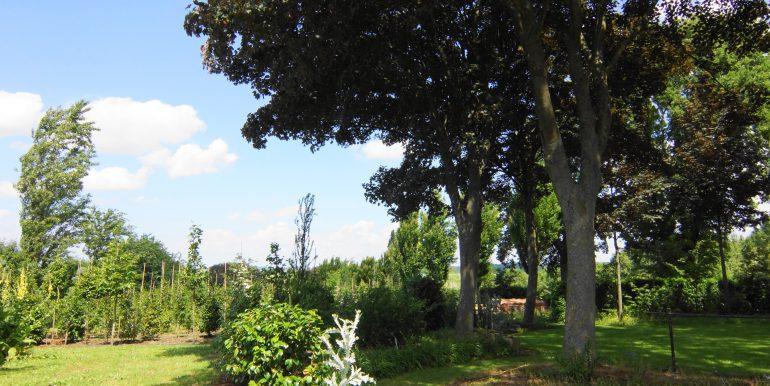 DSC05360 (1)Landbouwgrond
