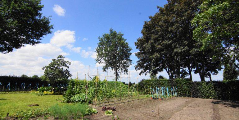DSC05363 (1)Landbouwgrond